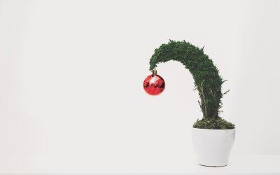 Egal, wie Sie Weihnachten verbringen…